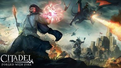 Photo of Citadel: Forged with Fire – Análisis PC