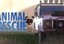 Photo of Animal Rescue llegará a PC y consolas el año que viene