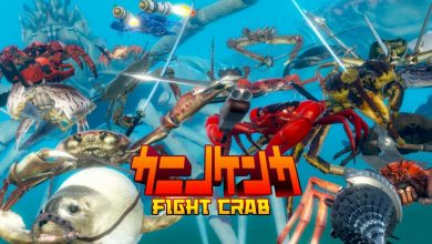 Photo of Fight Crab – Análisis Switch